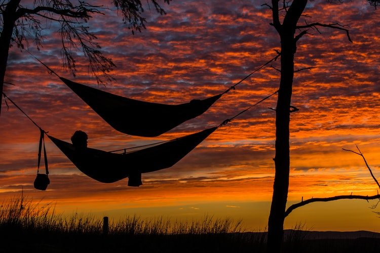 Hanging Hammock Between Trees