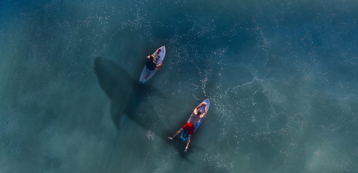 No Matter Your Size Best Paddle Boards For Big Guys In